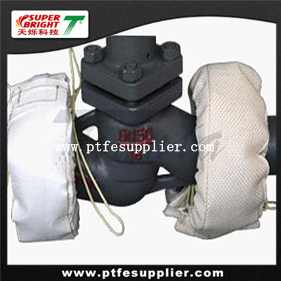 PTFE Flange Protector